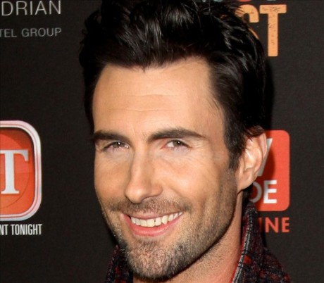 Adam Levine, Camille Grammer, Karina Smirnoff and more at TV Guide's Annual Hot List Bash